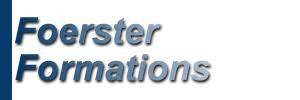 Foerster Business Solutions Ltd logo
